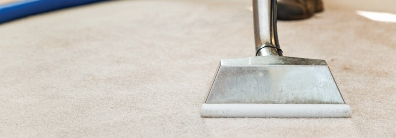 Carpet Cleaning in Madison, WI