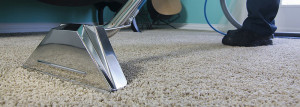 Steam Carpet Cleaning Madison, WI