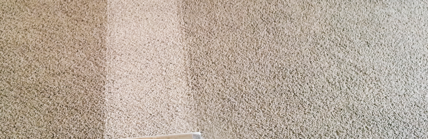 The Basics of Carpet Steam Cleaning - Service Plus Carpet ...